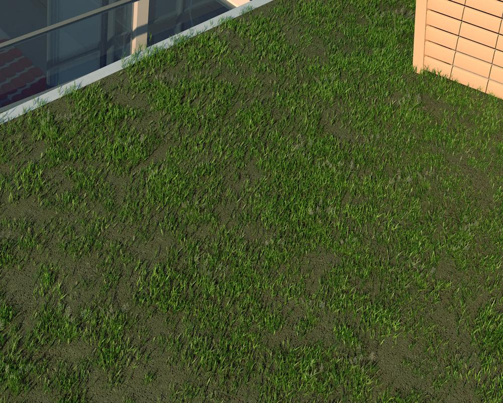 Dettaglio tetto verde